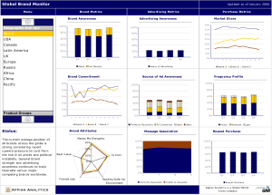 This brand marketing dashboard was implemented with Xcelsius